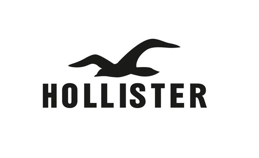 Hollister Winter Models